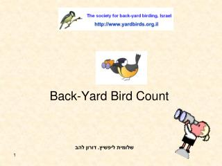 Back-Yard Bird Count