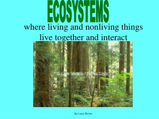 where living and nonliving things live together and interact