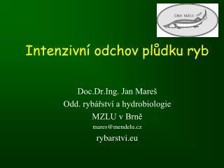Intenzivní odchov plůdku ryb Doc.Dr.Ing. Jan Mareš Odd. rybářství a hydrobiologie MZLU v Brně
