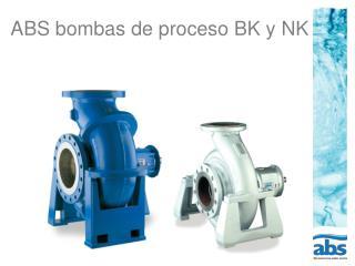 ABS bombas de proceso BK y NK