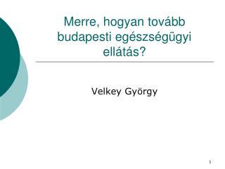 Merre, hogyan tov�bb budapesti eg�szs�g�gyi ell�t�s?