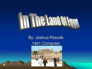 By: Joshua Roszak 1401 Computer