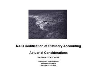 Actuarial Involvement in Codification