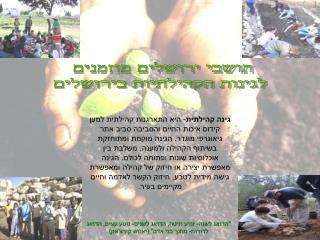 תושבי ירושלים מוזמנים  לגינות הקהילתיות בירושלים