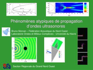 Phénomènes atypiques de propagation d'ondes ultrasonores