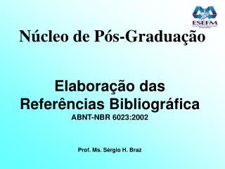 Núcleo de Pós-Graduação Elaboração das Referências Bibliográfica ABNT-NBR 6023:2002