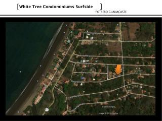 White  Tree Condominiums Surfside