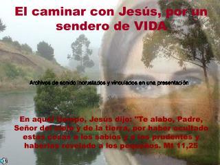 El caminar con Jesús, por un sendero de VIDA