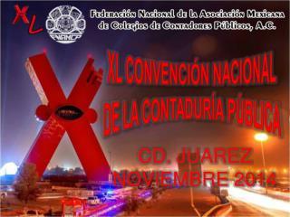 Xl CONVENCI�N  NACIONAL DE LA CONTADUR�A  P�BLICA