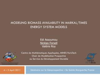 Modeling biomass availability in MARKAL/TIMES energy system models
