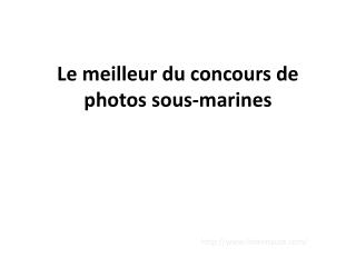 Le meilleur du concours de photos sous-marines