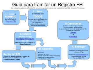 Bajar  el  FORMATO de solicitud de  Registro FEI