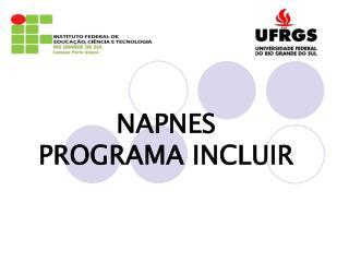 NAPNES  PROGRAMA INCLUIR