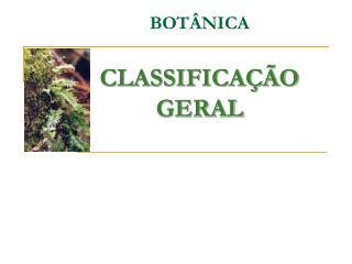BOTÂNICA CLASSIFICAÇÃO GERAL