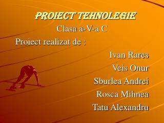 pROiect tehnolegie