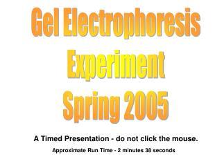 Gel Electrophoresis Experiment Spring 2005