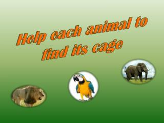 Help each animal to find its cage