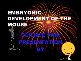 EMBRYONIC DEVELOPMENT OF THE MOUSE