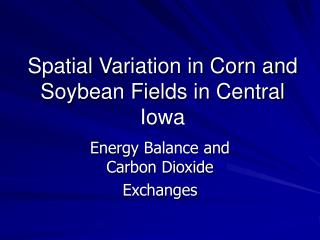 Spatial Variation in Corn and Soybean Fields in Central Iowa