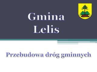 Gmina Lelis