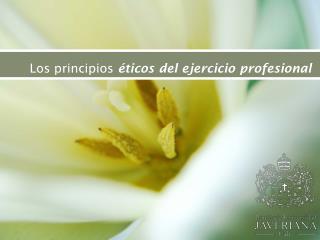 Los principios  éticos del ejercicio profesional