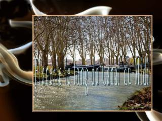 Flanerie le long du Canal du Midi