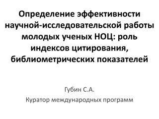Губин С.А. Куратор международных программ