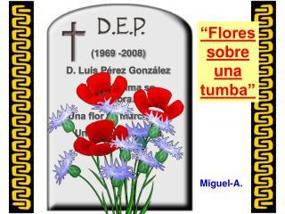 """(1969 -2008) D. Luis Pérez González """"Una lágrima se evapora… Una flor se marchita…"""