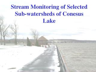 Stream Monitoring of Selected Sub-watersheds of Conesus Lake