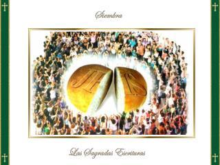 24  «Cuando  la  multitud se dio cuenta  de que  Jesús  y sus discípulos  no estaban allí ,