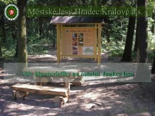 M?stsk� lesy Hradec Kr�lov� a.s.