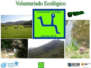 Voluntariado Ecol�gico