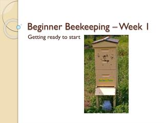 Beginner Beekeeping – Week 1