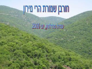 חורבן שמורת הרי מירון