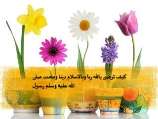 كيف ترضى بالله ربا وبالاسلام دينا ومحمد صلى الله عليه وسلم رسول