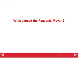 What caused the Peasants' Revolt?