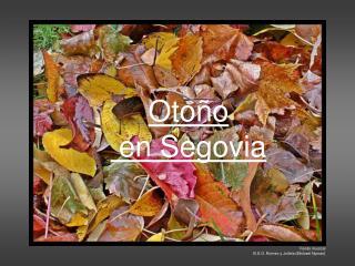Otoño  en Segovia