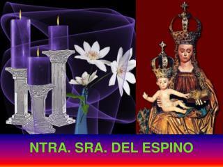 NTRA. SRA. DEL ESPINO