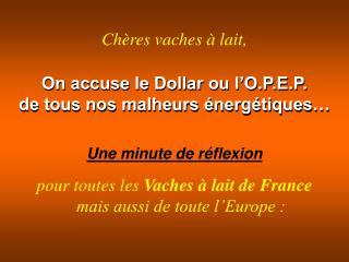 On accuse le Dollar ou l'O.P.E.P. de tous nos malheurs énergétiques…