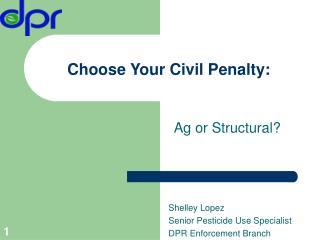 Choose Your Civil Penalty:
