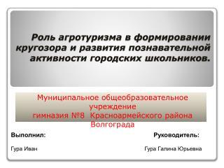 Муниципальное общеобразовательное учреждение   гимназия №8  Красноармейского района Волгограда