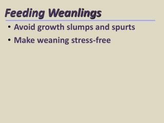 Feeding Weanlings