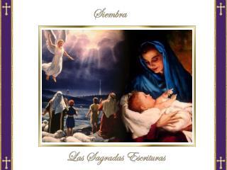 Solemnidad de la Natividad del Señor: Misa de medianoche