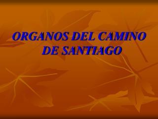 ORGANOS DEL CAMINO DE SANTIAGO