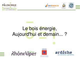 Le bois énergie, Aujourd'hui et demain...?