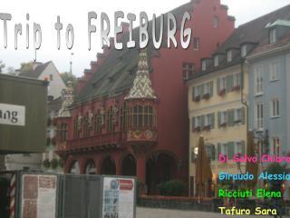 Trip to FREIBURG
