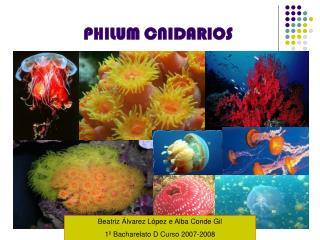 PHILUM CNIDARIOS