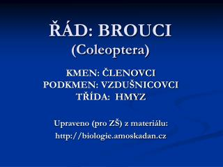 ŘÁD: BROUCI ( Coleoptera )