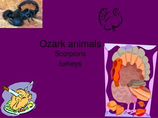 Ozark animals