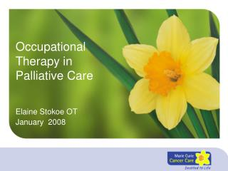 Occupational Therapy in Palliative Care